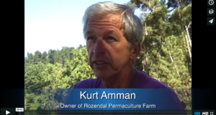 Mother Channel – www.motherchannel.com - Permaculture - Kurt Amman - Rozendal