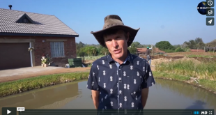 Jacques Damhuis - Permaculture Organic Expert