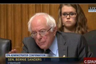 Bernie Sanders Grills Scott Pruit Image
