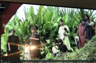 MOTHER CHANNEL | COP 23 LIVESTOCK BIOSEQUESTRATION FORESTS