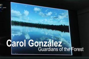 Mother CHannel | COP 23 DAY 12 The Story of Carol Gonzalez